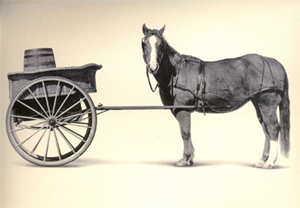 Avoid putting the cart before the horse when finding homes for sale in Charleston SC